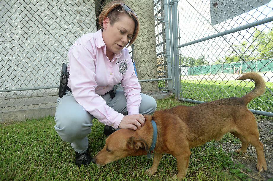 Detective Tina Lewallen, head of the Beaumont Police Department's Animal Services division, pets one of the dogs awaiting adoption at the shelter. The department has been performing well in running the animal control shelter as well as investigating a steady load of animal abuse cases.