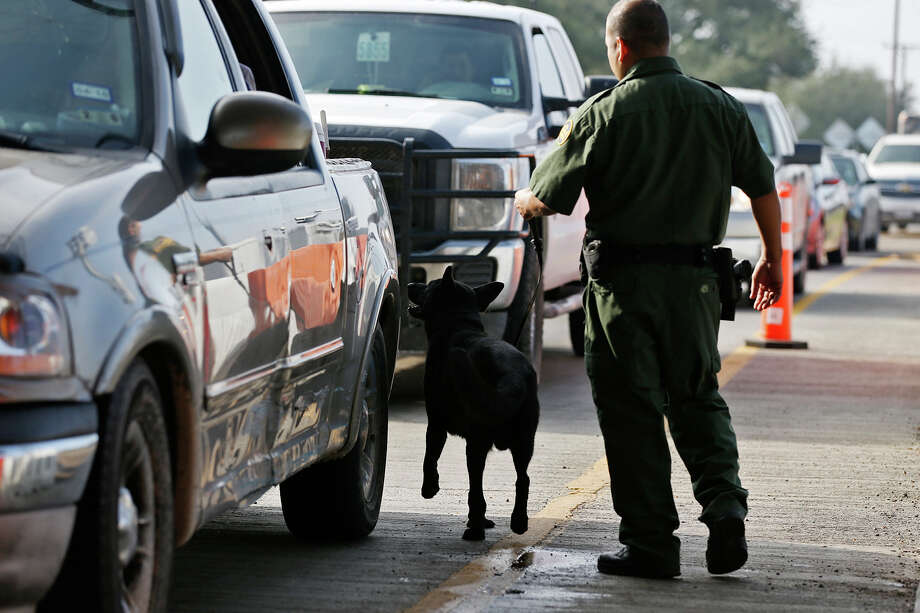 A U.S. Border Patrol agent runs a dog down the lanes of traffic at the checkpoint near Falfurrias on Tuesday. US Border Patrol Search, Trauma and Resue (BORSTAR) team has seen rescues of immigrants in the Rio Grande Valley sector of Border Patrol surge in FY 2015 compared to a year before.. Photo: JERRY LARA /San Antonio Express-News / © 2015 San Antonio Express-News