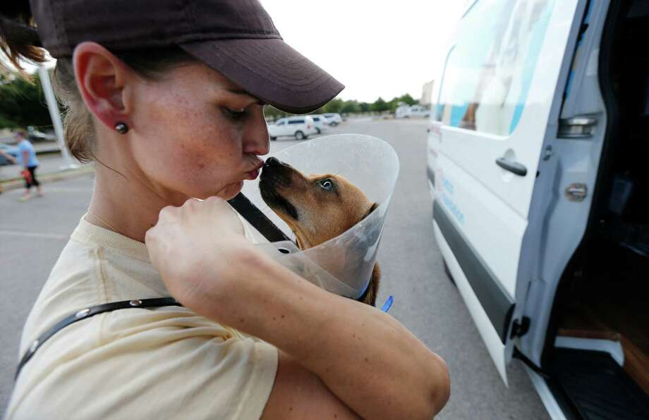 Wendy Black gives a kiss to her foster puppy, Bean, before the dog's ride to New England in the Animal Rescue Friends' van. Photo: Kin Man Hui /San Antonio Express-News / ©2015 San Antonio Express-News