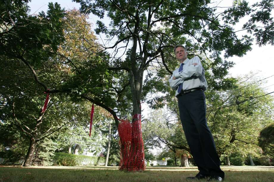 Kieran Ryan stands next to an oak tree his grandfather, Patrick J. Hogan, planted on the grounds of Sacred Heart Academy. Ryan is hoping to persuade developers to preserve the historical tree, one of 84 oaks planted around the state from seedlings of children of the original Charter Oak in which the original Connecticut charter was said to have been hidden in the 1600's. Photo: Matthew Brown / For Hearst Connecticut Media / Connecticut Post Freelance