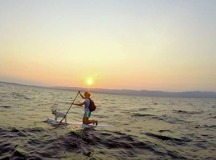 Lindsey Fekete of Saratoga Springs and her 12-year-old West Highland Terrier Patty enjoyed the sport of paddle boarding this summer. Patty wears a life vest and loves the water. This scene at Sacandaga Lake was captured on a GoPro by her husband Pete Fekete.