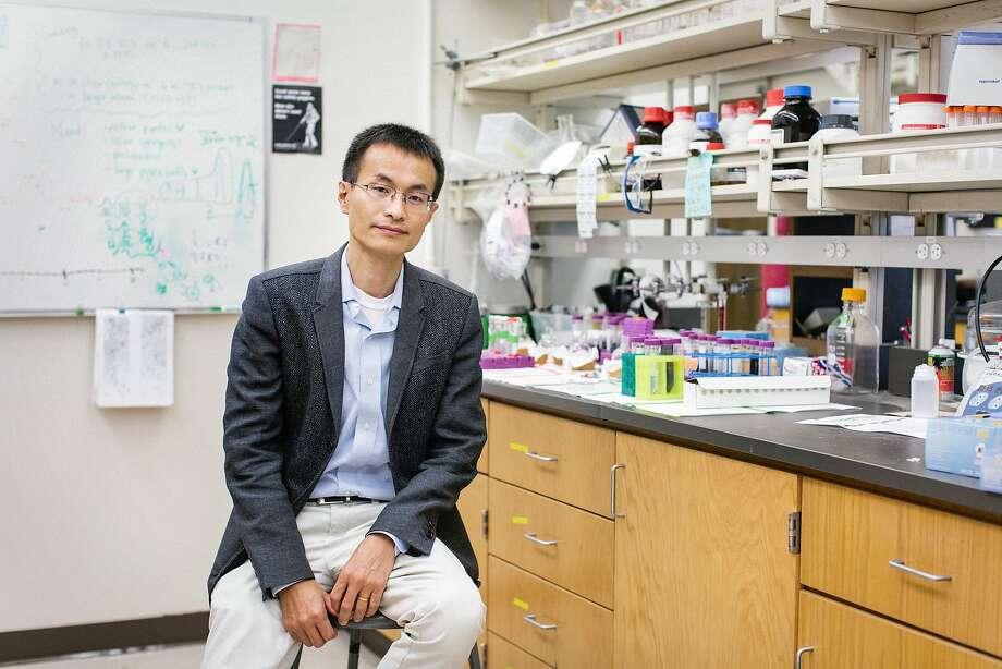 Peidong Yang is a UC Berkeley chemist. Photo: Courtesy MacArthur Foundation