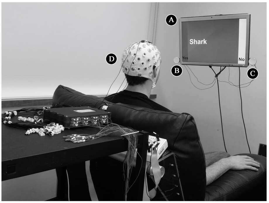 "PLOS ONE caption: EEG Components of the BBI for the Respondent. During the experiment, the respondent sat in front of a computer screen (A) on a comfortable chair, while EEG signals were recorded from the scalp using an active electrode cap (D). SSVEPs in the EEG signal from the occipital lobe were driven by the frequencies of two flashing LEDs, positioned on the left (""Yes"" answer, 13 Hz: B) and the right (""No"" answer, 12 Hz: C) side of the screen.  (Image from BBI research report in PLOS ONE)"
