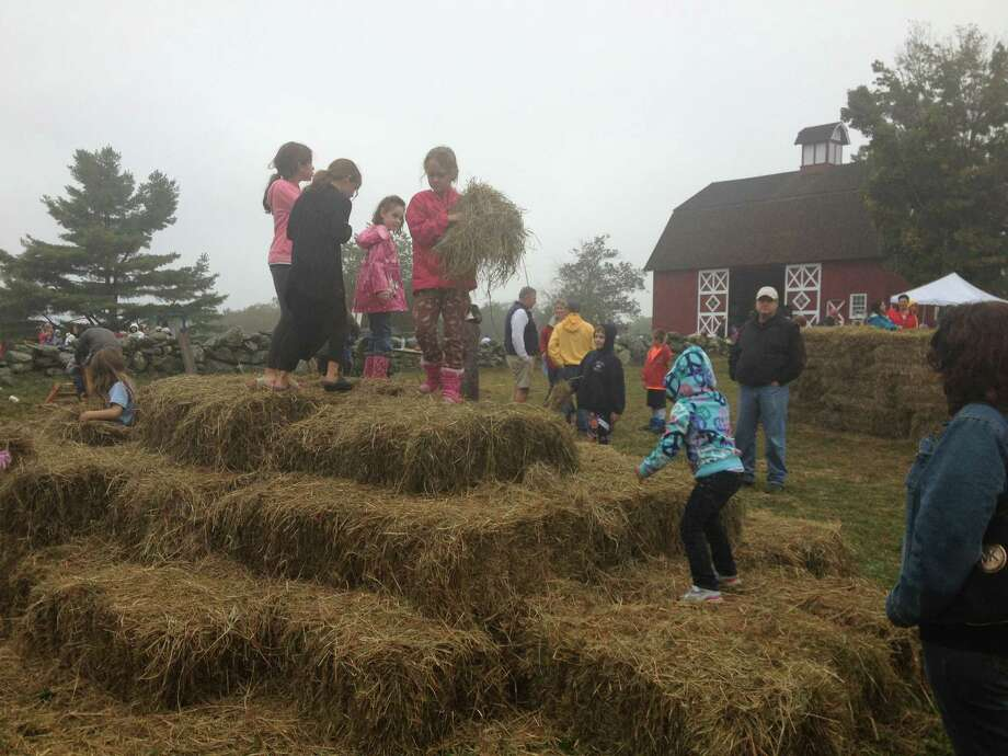 The Wilton-owned Ambler Farm will celebrate its 15th annual farm day on Sunday, Oct. 4. Photo: Contributed Photo