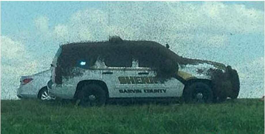 Deputy Carl Zink of the Garvin County Sheriff's Office in Oklahoma said he got stuck inside his patrol car when an 18-wheeler carrying bees overturned on Interstate 35, Sept. 29, 2015. The loose bees covered all his windows. Photo: Christian, Carol, Via New York Daily News