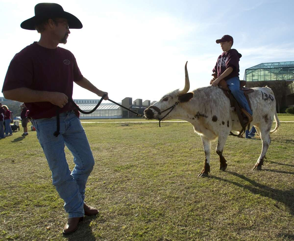 Ronald Libhart, of Wortham, Texas, leads a longhorn ridden by Roy Owens, 11, of Mexia, Texas, before an NCAA college football game between Texas and Texas A&M at Kyle Field Thursday, Nov. 24, 2011, in College Station. ( Brett Coomer / Houston Chronicle )