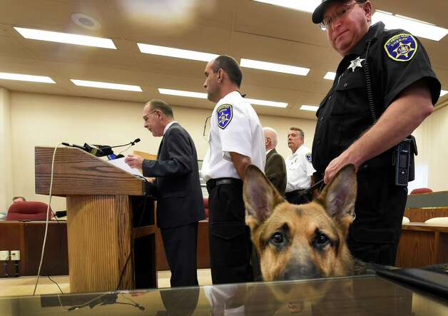 Sheriff's Deputy K-9 Diesel peers over the desk as Anthony W. Jasenski, Sr. chair of the Schenectady County Legislature announces the start up of a new County-wide Drug Unit run by the Sheriff's Department, to address the growing heroin epidemic that is impacting the county during a press conference held Sept. 30, 2015 in Schenectady, N.Y.  Diesel's handler is Deputy Dave Leffingwell.  (Skip Dickstein/Times Union) Photo: SKIP DICKSTEIN / 10033557A
