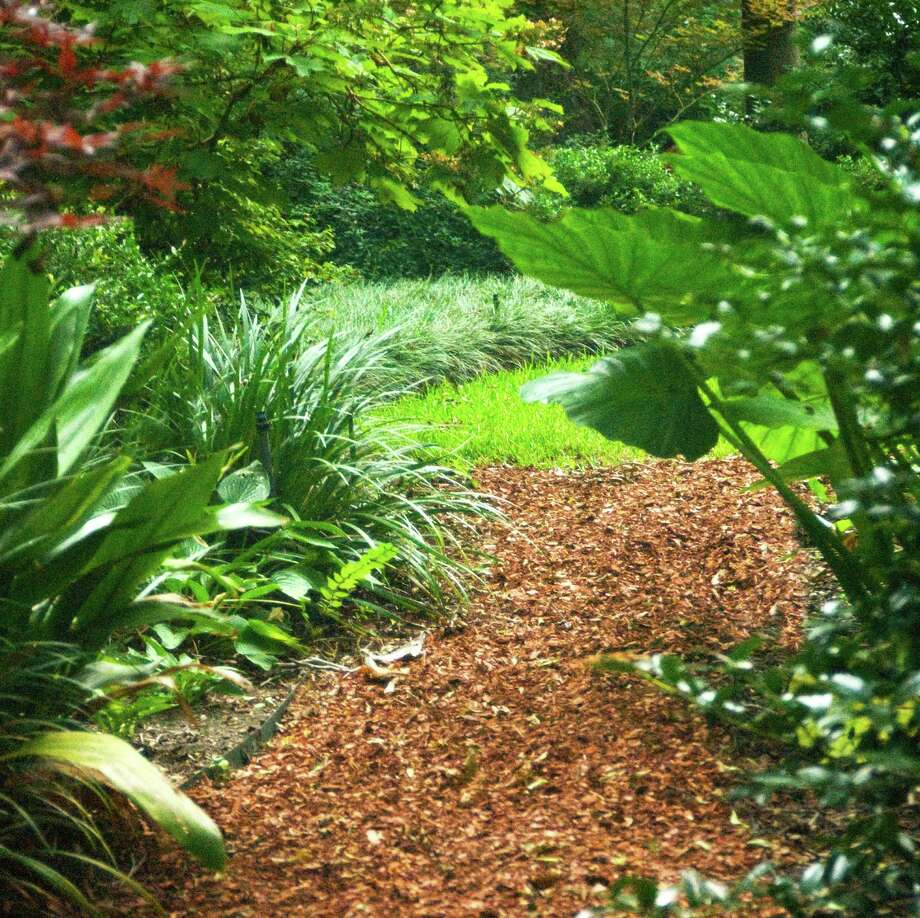 Finely ground pine bark mulch not only looks great, it's readily available and is easy to use. Photo: Courtesy Photo