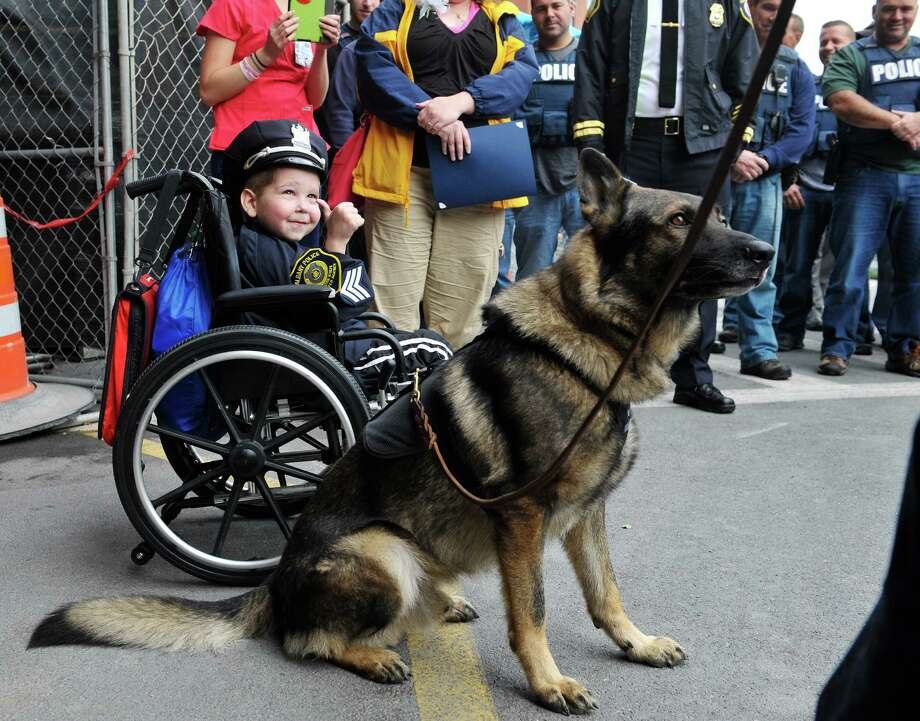 Evan Borggreen, 4, of Unadilla, gives a thumbs up to Albany Police officer, Kyle McCraith, who is holding the leash of his K-9, Robby, outside of Albany Med on Thursday, Oct. 1, 2015, in Albany, N.Y.  Borggreen was sworn in as an honorary police officer in front of numerous members of the Albany Police force. Borggreen is  battling acute lymphoblastic leukemia and is being treated at the Bernard & Millie Duker Children's Hospital at Albany Medical Center.  One of Borggreen's nurses, R.N. Ellen Scheer, knew that he wanted to be a police officer when he grows up and Borggreen has even made it a habit of going around to check in on other children in the hospital.  Scheer contacted Albany Police officer Christopher McCoy who talked to his command officers and city hall to make the event happen.  (Paul Buckowski / Times Union) Photo: PAUL BUCKOWSKI / 10033565A