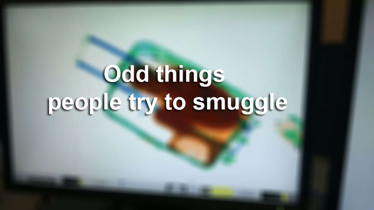 Believe it or not, people are caught smuggling things other than drugs.