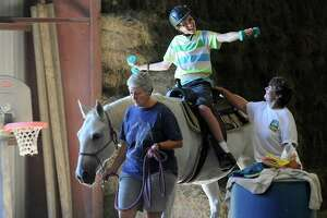 Horse therapists' costly labor of love - Photo