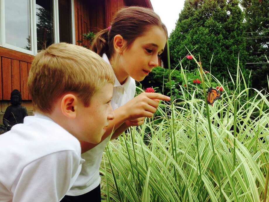 "My grandchildren Isabella, 10, and Kellen, 8, of Latham recently noticed a chrysalis attached to a bucket in their yard. They checked it daily waiting for the butterfly to appear.  After a week, when they got off the school bus, they ran to the bucket and found the cocoon was broken and a monarch was very still in the tall grass nearby.  Isabella told me that its wings had to be dry before it could fly and it would probably travel to Mexico.  I told her it was waiting for them to say goodbye.  After a few minutes the beautiful monarch butterfly  took flight to their applause and loud cheers.  Kellen shouted, ""Send us a postcard when you get there!""  I must admit I was as excited as they were and happy to capture it all on my cellphone camera. (Joanne V. Lue)"