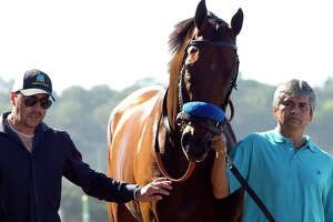 American Pharoah tries to rally back from Travers upset - Photo