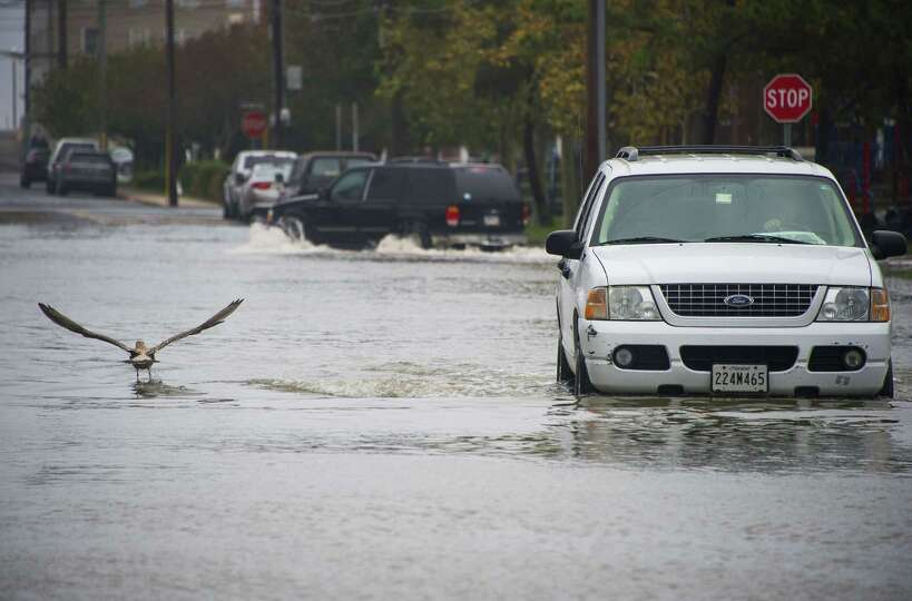TOPSHOTS A seagull takes off as a man drives down a flooded street in Ocean City, Maryland, on Octob