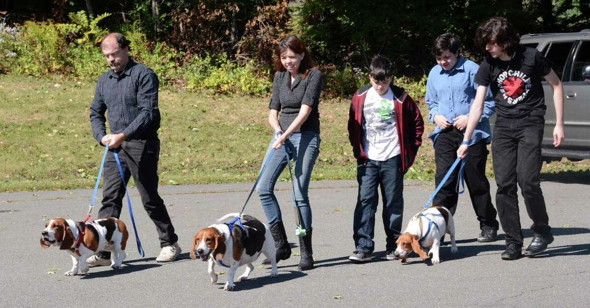 From left, Peter Hornig from Danbury and his family, Joanne, Jacob, Nahaniel and Peter bring the families bassett hounds to the Danbury United methodist Church on Sunday, October 4, 2015 for a blessing of the animals.