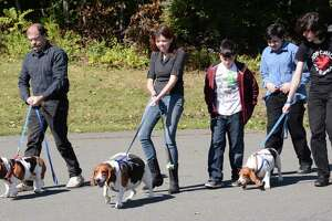 Danbury church blesses animals in honor of St. Francis - Photo