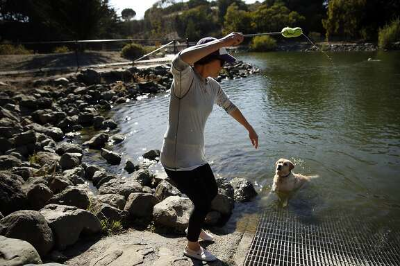 Kieran Collins throws a fetch stick as Reyli waits to retrieve it at McLaren Park in San Francisco, Calif., on Sunday, October 4, 2015.