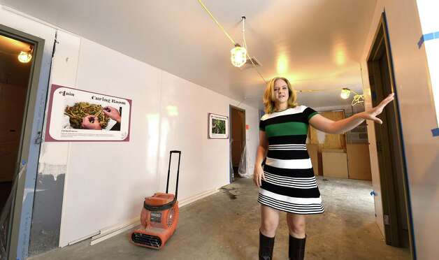 Hillary Peckham, COO shows the different rooms that will be used in production at Etain medical marijuana plant  Monday Oct. 5, 2015 in Chestertown, N.Y.     (Skip Dickstein/Times Union) Photo: SKIP DICKSTEIN / 10033496A