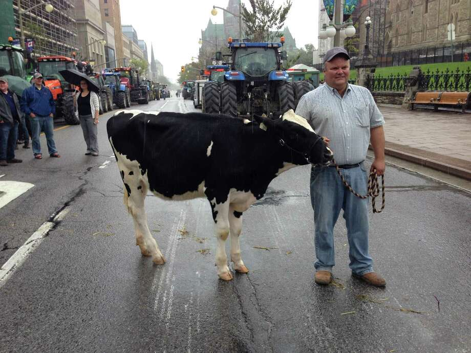 Canadian dairy farmers held a protest in Ottawa, saying they fear opening up the market to foreign milk imports will harm their supply-managed industry. Photo: MICHEL COMTE / AFP