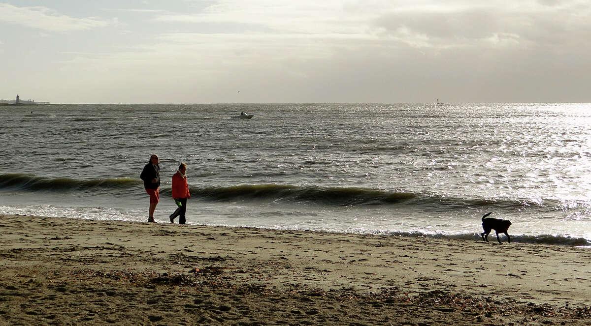 John and Heather Petch of Fairfield follow their dog, Mali, along the Jennings Beach shoreline on Sunday.