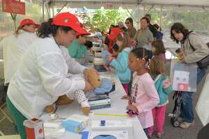 "Teddy Bear ""clinic"" drew 1,700 people to Greenwich Hospital - Photo"