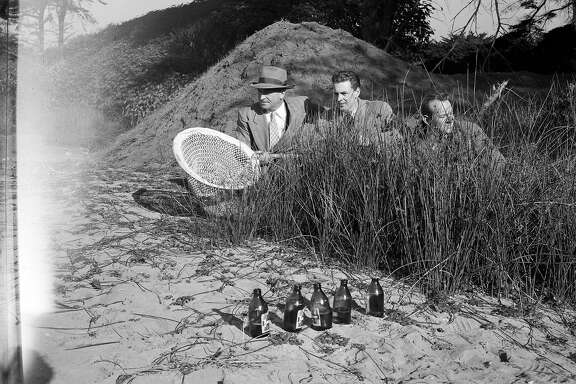 l tp r Carey Baldwin, Shell Qvale ad Don Pickford hunting the dunes for Pokey the Himalayan Bear and escape artist, was on the loos for 11 days from Fleishhacker Zoo   January 1949