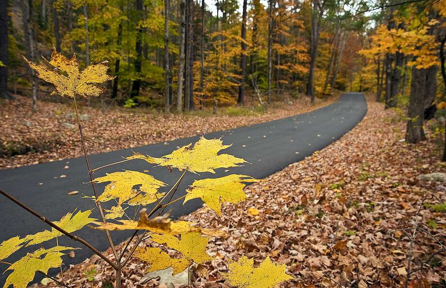 AP MEMBER FEATURE EXCHANGE ADVANCE FOR NOV. 3 - In this Oct. 22, 2013 photo, Connecticut fall foliage nears peak color in Peoples State Forest in Barkhamsted, Conn. Local Innkeepers, restaurateurs and conservation officials said this fall has been the best for foliage and business in at least three years. (AP Photo/Republican-American, Jim Shannon) Photo: Jim Shannon, Associated Press