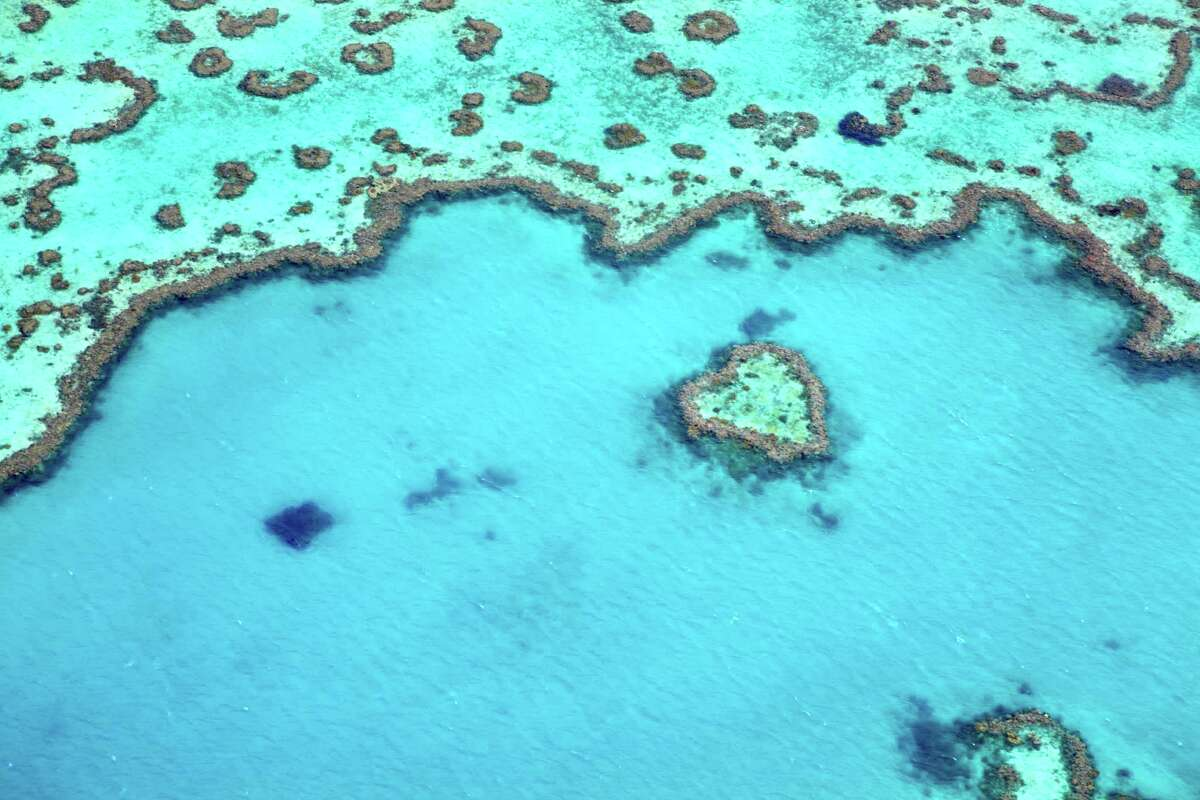 2. Great Barrier Reef, Australia Why: