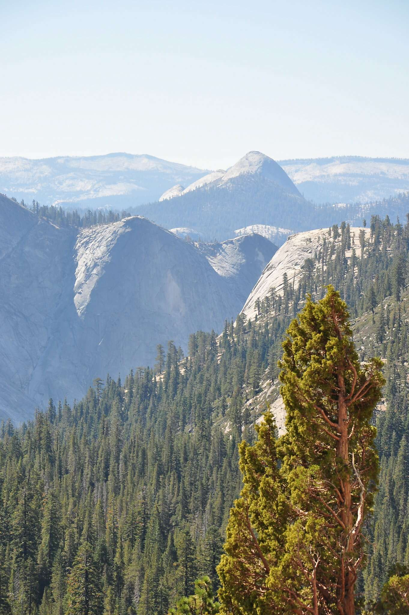 Yosemite: The essential guide to enjoying autumn's spectacle