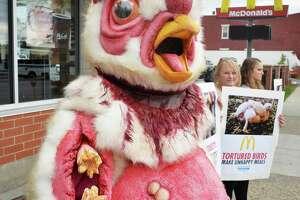 Advocates for abused chickens protest at Albany McDonald's - Photo