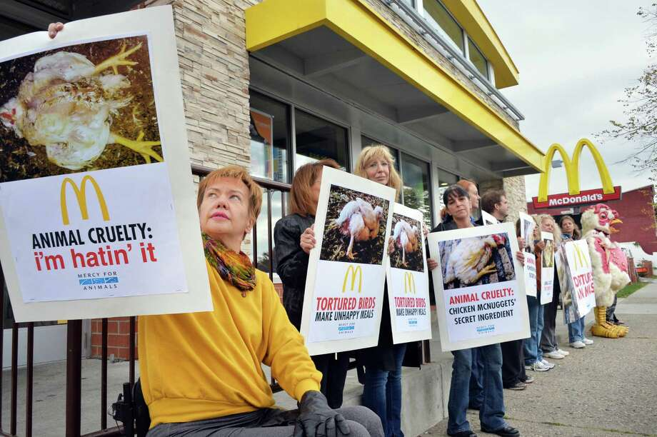 Animal activist Eva Galvin, left,  of Niskayuna and others protest at McDonaldOs on Central Ave. Wednesday October 7, 2015 in Albany, NY. (John Carl D'Annibale / Times Union) Photo: John Carl D'Annibale / 10033610A