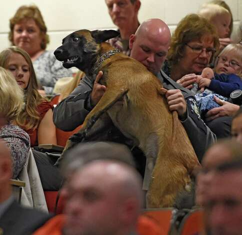 Canine Mac tries to get a better view of the proceedings at the New York State Police Canine Handler Basic School graduation as he jumps in to his handler, Trooper Peter Schrage's lap at the State Police Academy Oct. 8, 2015 in Albany, N.Y. Trooper Schrage works in Troop E.     (Skip Dickstein/Times Union) Photo: SKIP DICKSTEIN / 10033669A