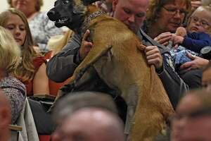 Photos: Police dogs, handlers graduate in Albany - Photo