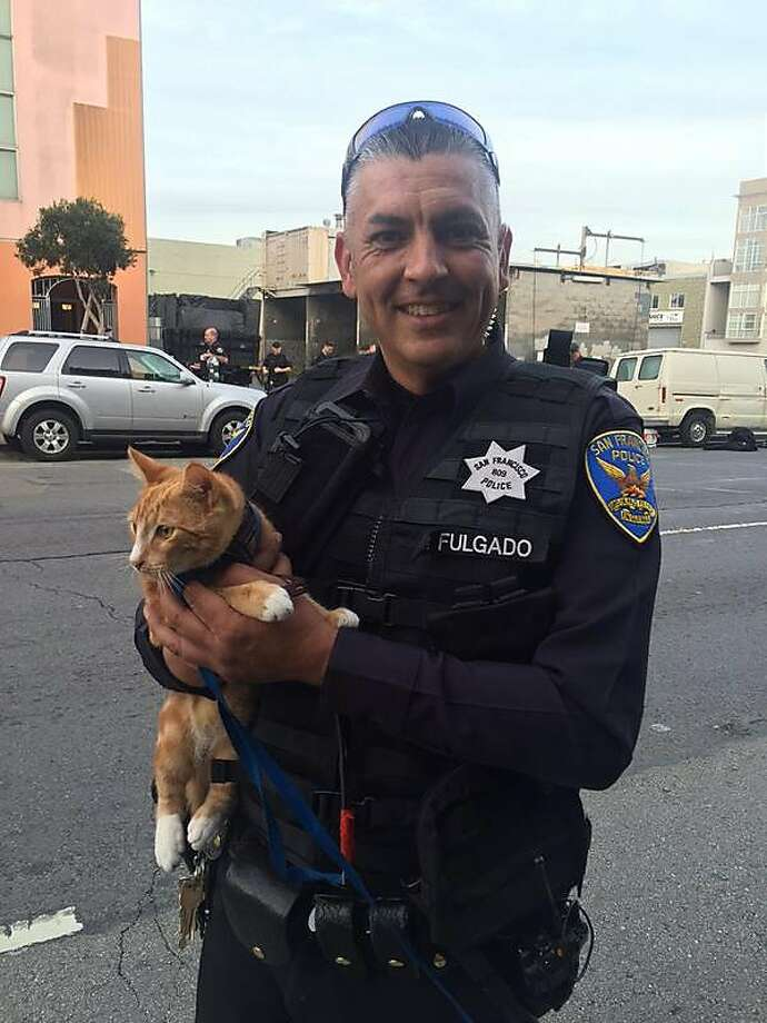 S.F. police Officer Shawn Fulgado holds the cat that helped officers bring a suicidal man down to safety. Photo: Courtesy, San Francisco Police Department