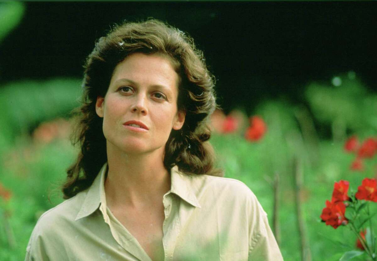 Weaver is a three-time Oscar nominee, but her best year was 1989, when she won two Golden Globes on the same night -- for a lead role as naturalist Dian Fossey in the film