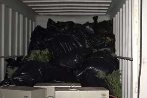 Cops bust huge marijuana operation north of Houston - Photo