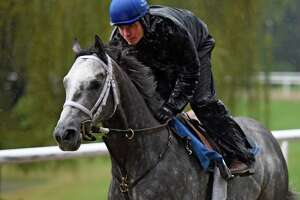 Rain keeps Frosted from Breeders' Cup workout in Saratoga - Photo