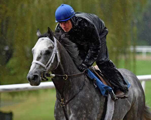 Exercise rider Rob Massey guides Stakes winner Frosted around the all weather training track at the Darley Training Center Friday morning Oct. 9, 2015 in Saratoga Springs, N.Y.        (Skip Dickstein/Times Union) Photo: SKIP DICKSTEIN / 10033627A