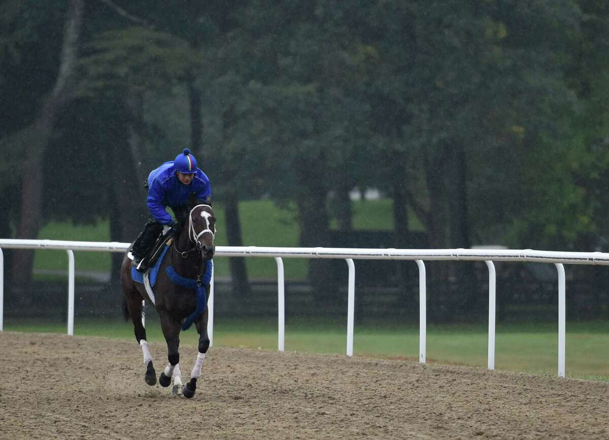 Exercise rider Miguel Jaime rides Wedding Toast around the all weather training track at the Darley Training Center Friday morning Oct. 9, 2015 in Saratoga Springs, N.Y. (Skip Dickstein/Times Union)