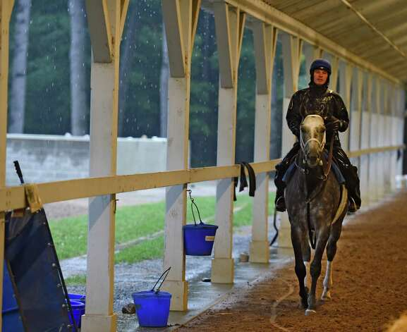 Exercise rider Rob Massey cools out Stakes winner Frosted in the shed row at the Darley Training Center Friday morning Oct. 9, 2015 in Saratoga Springs, N.Y.        (Skip Dickstein/Times Union) Photo: SKIP DICKSTEIN / 10033627A