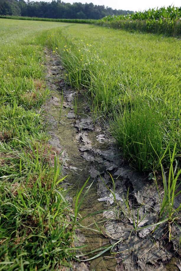 A dry water ditch is seen next to a corn field in Cordova, Md. In a 2-1 ruling, a panel of the 6th U.S. Circuit Court of Appeals in Cincinnati put new water regulations on hold nationwide until the court decides whether it has jurisdiction to consider lawsuits against them. Photo: Associated Press / AP