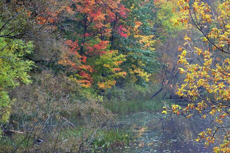 Watervliet Reservoir Friday Oct. 9, 2015 in Guilderland, NY.  (John Carl D'Annibale / Times Union) Photo: John Carl D'Annibale