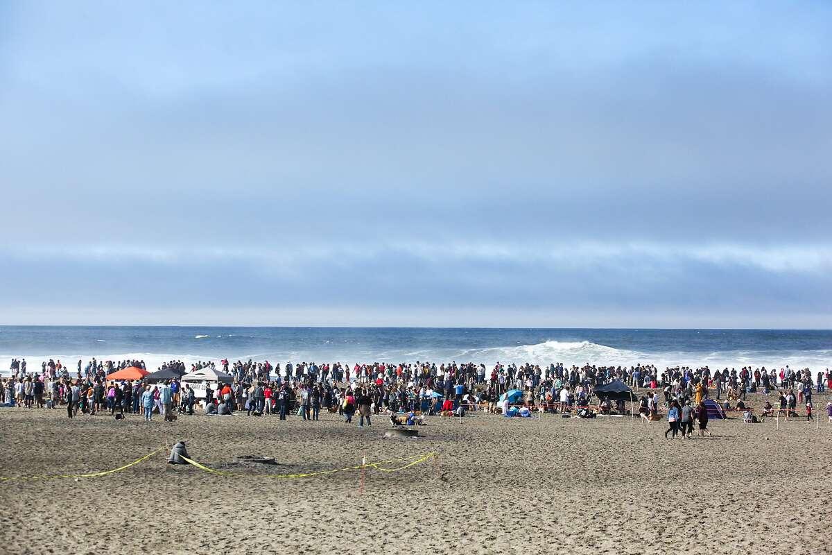 There were hundreds of Corgis in attendance atCorgi Conat Ocean Beach in San Francisco, California on October 10, 2015.