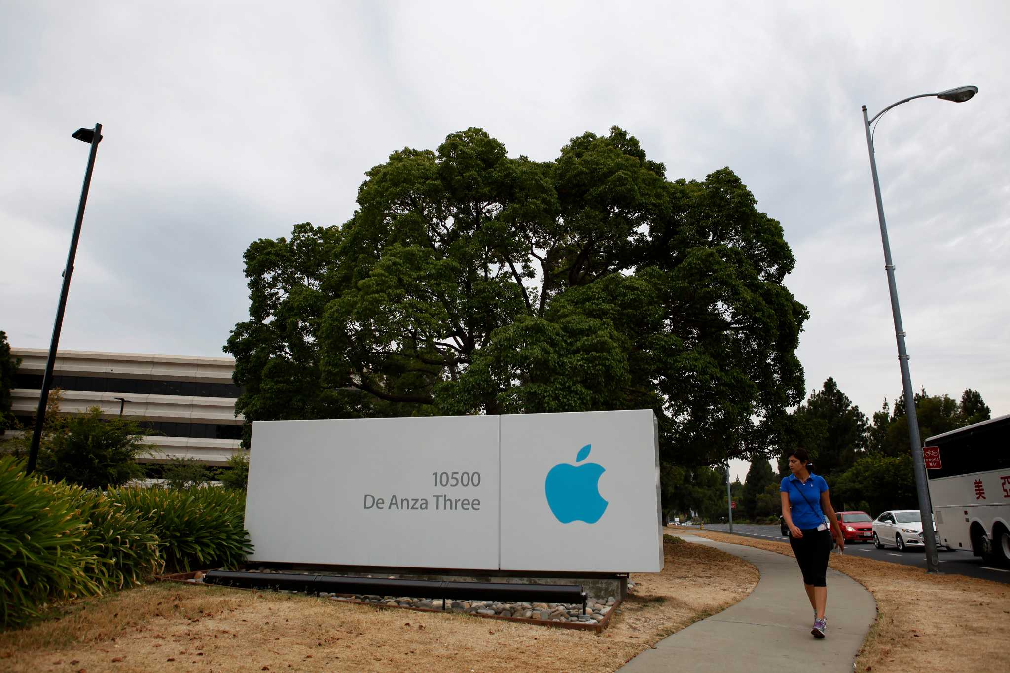 with apple on expansion streak will it outgrow cupertino san francisco chronicle office