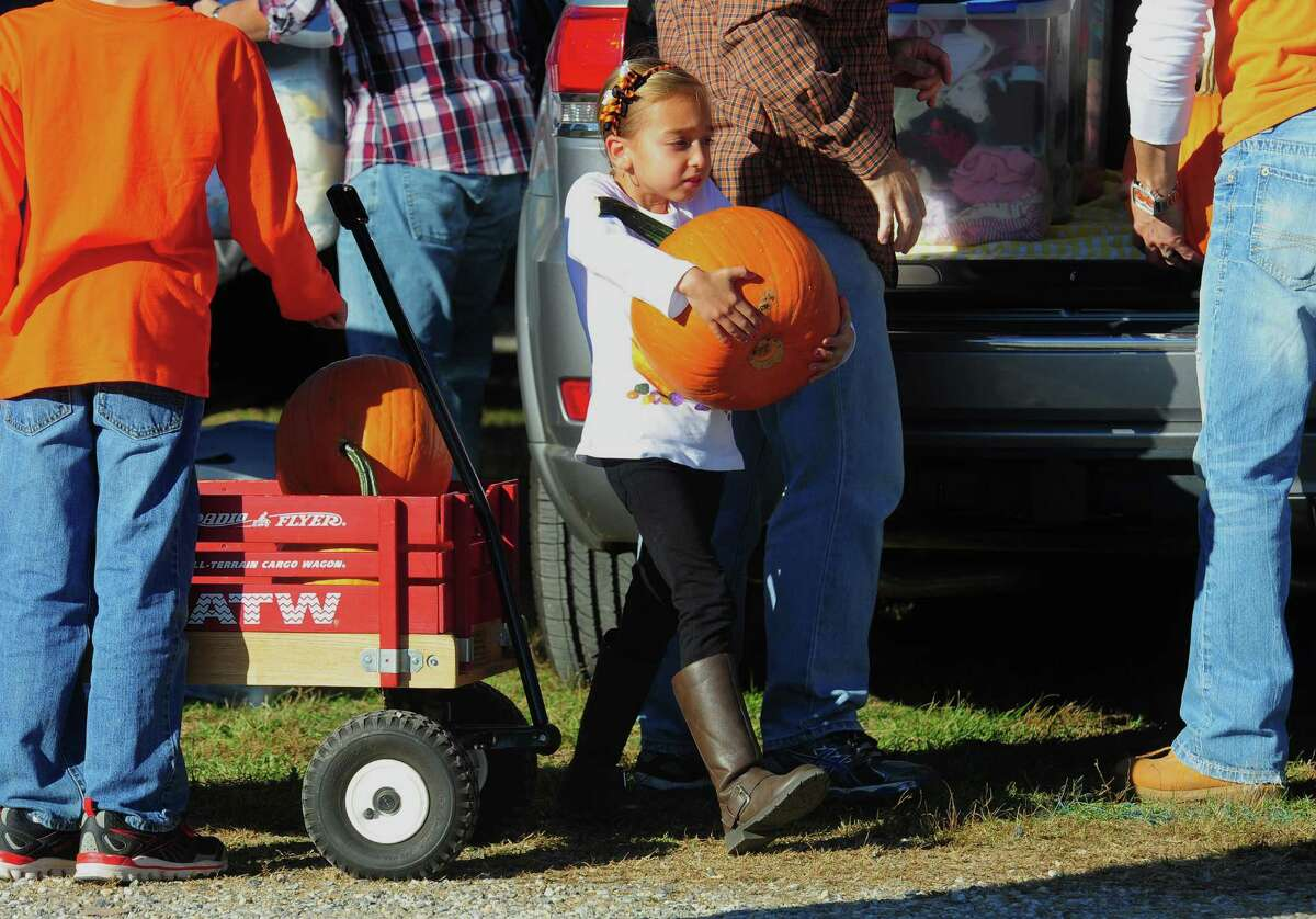 Isabella Ramos, 7, of Shelton, carries a pumpkin from her wagon to the car after spending the afternoon with her family at Jones Family Farms' Pumpkinseed Hill Farm off of Beardsley Road in Shelton, Conn. on Saturday October 10, 2015. The farm will be open daily from 10 a.m. to 5:30 p.m. through October 31st.