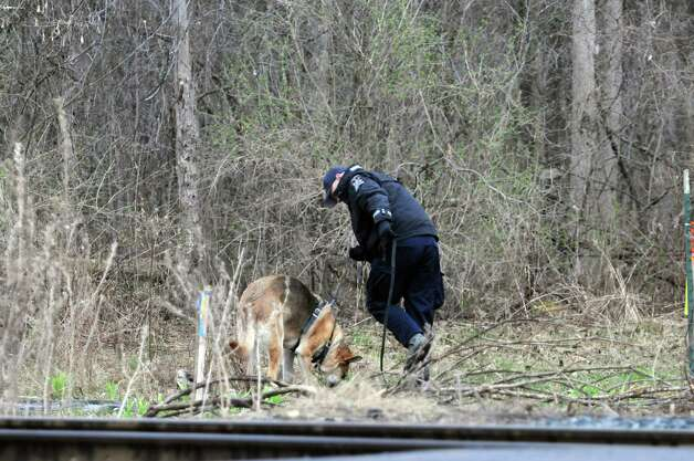 A State Police officer along with a police dog conduct a search of an area off of Alplaus Avenue on Wednesday, April 23, 2014, in Glenville, N.Y.  State Police were in the area resuming the search for Craig Frear, who disappeared in 2004.    (Paul Buckowski / Times Union) Photo: Paul Buckowski / 00026592A