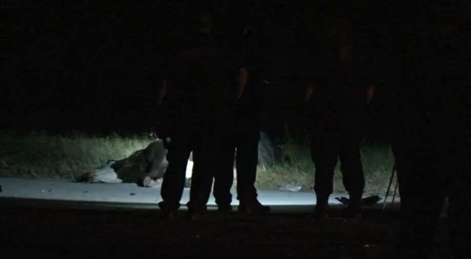 A loose cow on the highway near Katy caused a fatal motorcycle collision and another car accident early Sunday morning. Photo: Metro Video