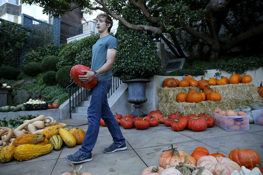 Wyeth Coulter carries a pumpkin at his backyard pumpkin patch in San Francisco. Photo: Connor Radnovich, The Chronicle