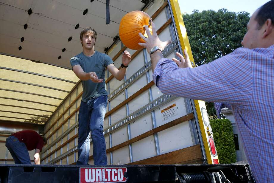Wyeth Coulter tosses a pumpkin out of a semitruck in San Francisco. Photo: Connor Radnovich, The Chronicle