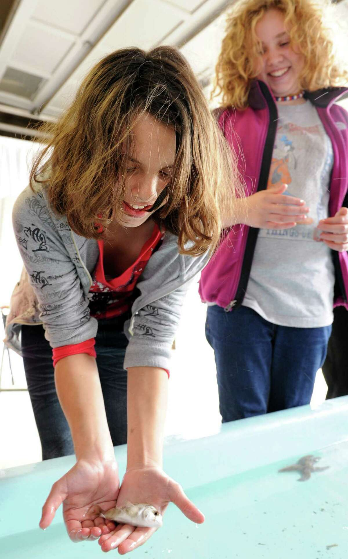 In this file photo, Ariel Rodriguez, a sixth-grader at The Montessori Middle School in Norwalk, holds a porgy fish Friday Oct. 15, 2010 during an open house at the National Oceanic and Atmospheric Agency lab in Milford. The lab will stage an open house on Saturday, Oct. 17, 2015.